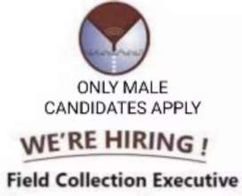 Payment collection/Data collection work Field executive direct joining