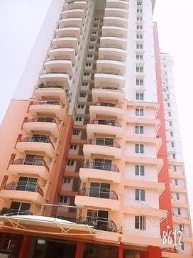 Tripunithura Karingachira Road Chathari 3 Bedroom Furnished Flat Rent