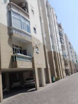 3 bhk flat for rent near AIIMS