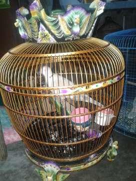 Dijual Borongan Puter Pelung