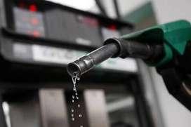 Petrol fangbigani