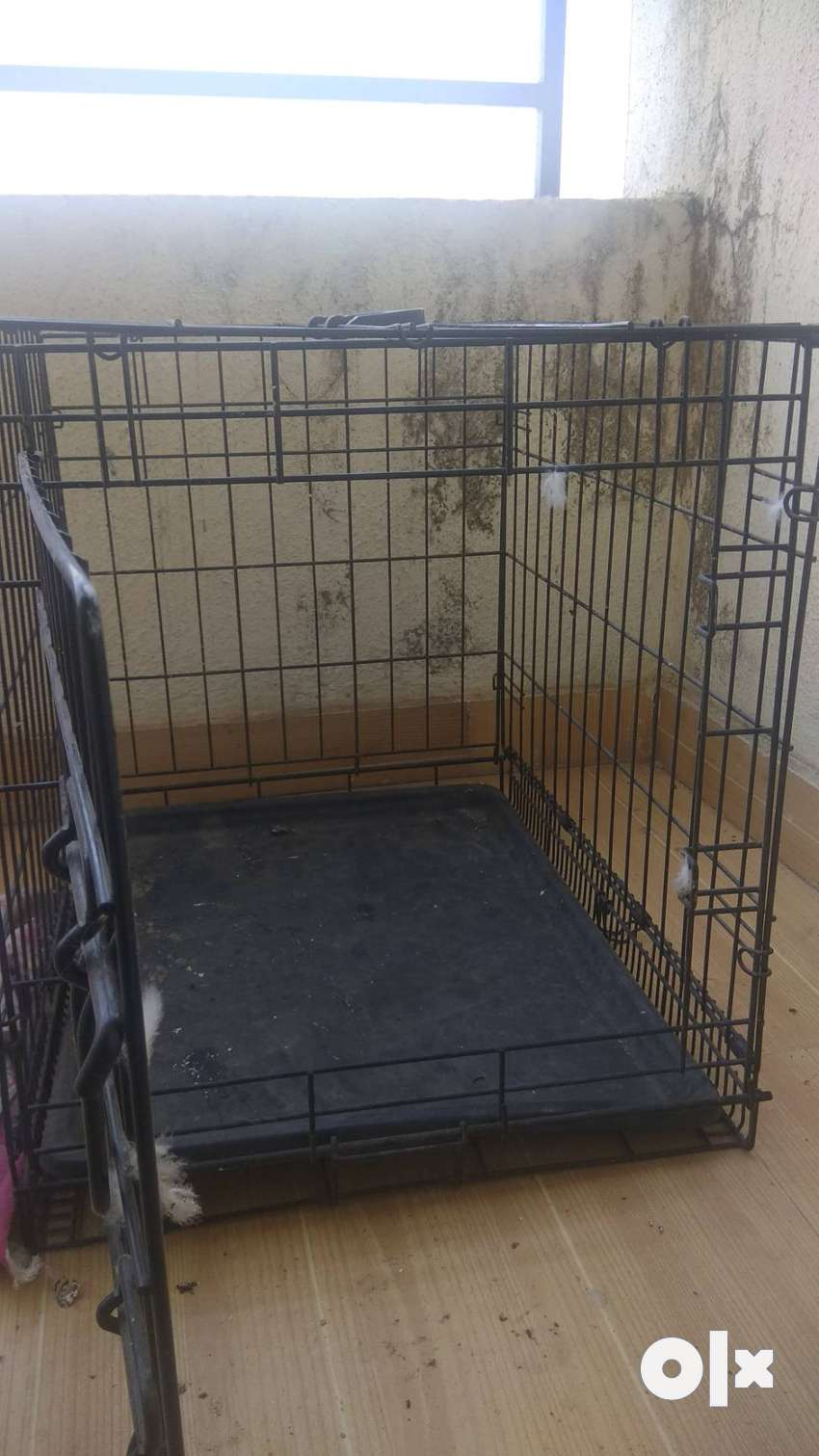 pet small home 0