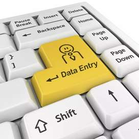 96533127O1. Data entry job only