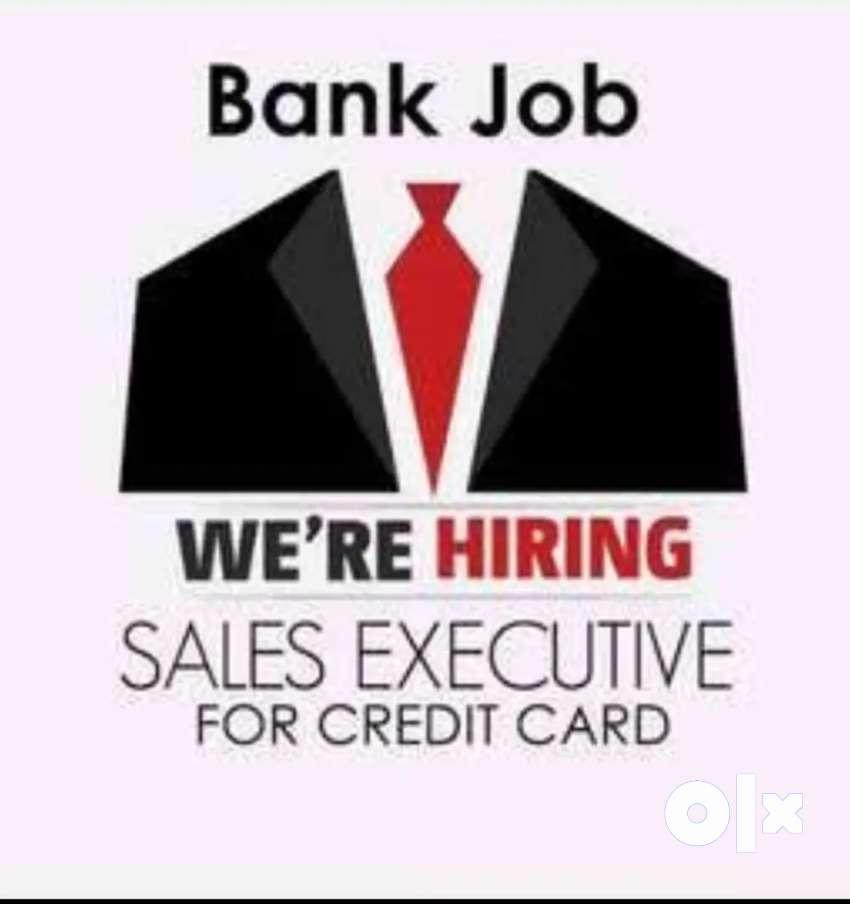 Sales Executive for Retail, Bank Credit card sales, Kochi