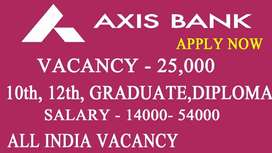 AXIS process hiring for domestic BPO/Backend/CCE process in Delhi