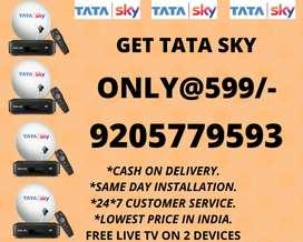 BIG SALE ON TATA SKY HD DTH