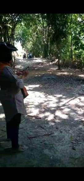 UTARA KELURAHAN ARGOMULYO Rumah Murah Sisa Tanah & Kolam JK8190