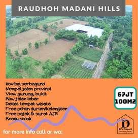 Tanah Kavling Kontur Datar cocok untuk villa, view gunung, Raudhoh MH