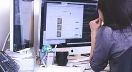 IT Engineer & Developer