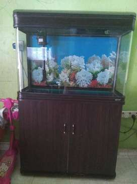 Aquarium Set Meja