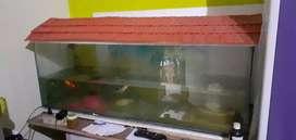 Fish Tank with Fish Tank Equipments