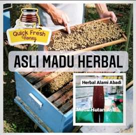 Asli Madu Herbal Madu Hutan Asli Herbal Alami Abadi 500gram