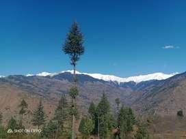 Hotel area for Rent in Himachal Pradesh