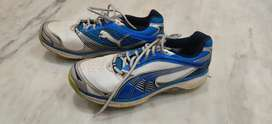 Cricket shoes for sale ( spikes)