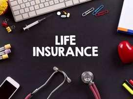 Palasa/Life Insurance/Degree pass/Field Work/Fixed salary