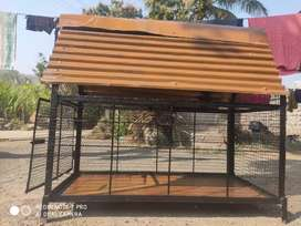 House for dog