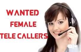 Female telecaller for web development