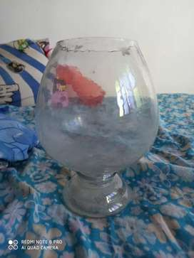 Fish pot in new condition for sell