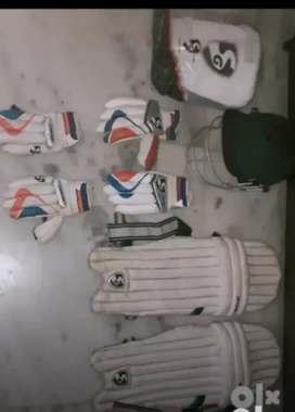 Cricket kit for dues ball