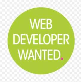 Required For Website developer.