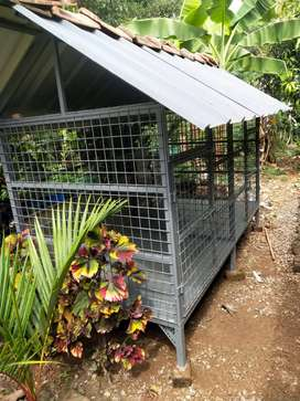 New Cage for dog