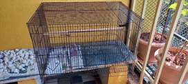 Cage  For Bird s