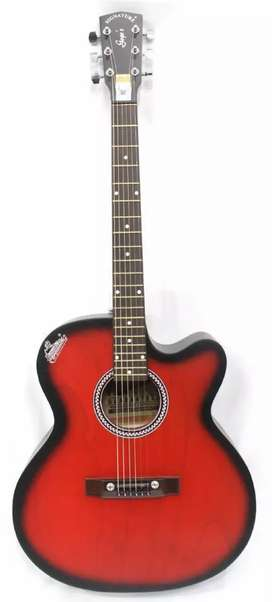 Brand New Guitar ( Holmer company )