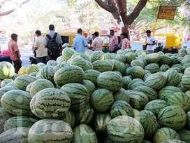 Watermelon wholesale rate price