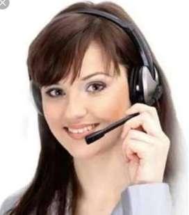 Telecaller Executive
