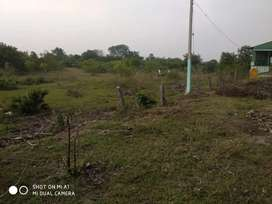 Exclusive property in TINDIVANAM NH SUITABLE FOR SHOPPING HUB
