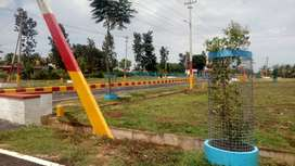 we have more than 1400 plots