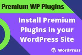I will install premium plugins or themes on your WordPress site