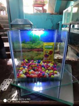 All size New aquariums available