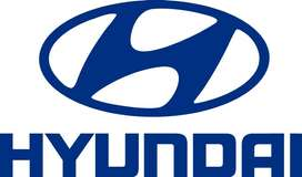 NEED FOR SALES EXECUTIVE /BACK OFFICE IN HYUNDAI SHOWROOM !