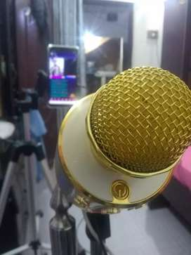 Singera Required (Best Singers Only)