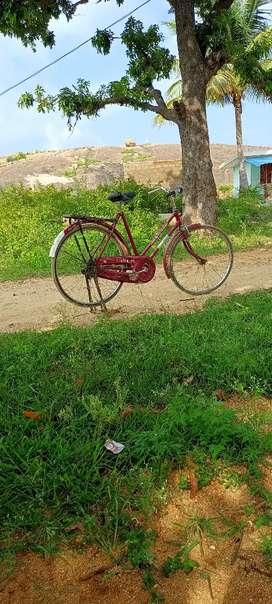 Raju cycle
