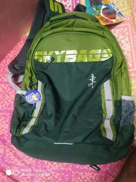Sky Bag  green color 4 compartmen bag price negotiate