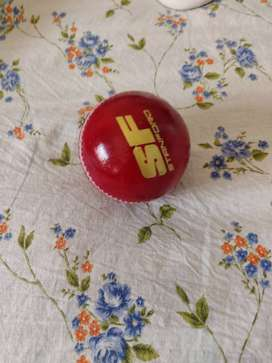 Cricket full Kit men size