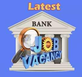 Urgent Requirements of Buisness Development Executive