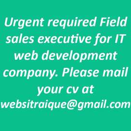 Urgent required Field sales executive for IT web development company