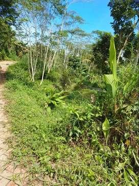 Dijual Tanah SHM seluas 4254 m² dekat Pasar Gunung Pati