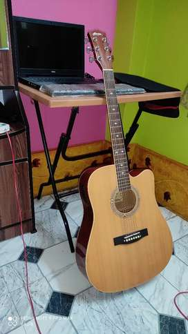 Acoustic Guitar (Hertz company)