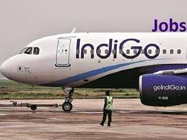 URGENT HIRING Apply now-Airport Hirirng- Ground Staff- IndiGo Airlines