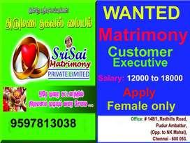 Matrimony Executive & DTP designer
