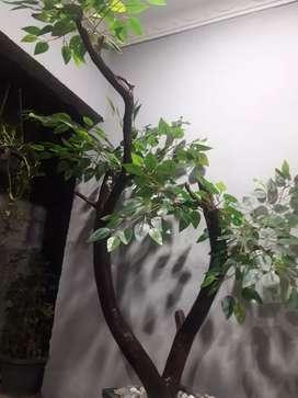 Pohon beringin artificial