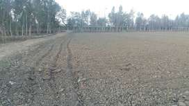 agriculture land for sell urgent