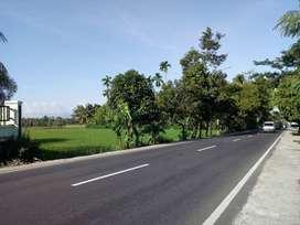 Tanah pinggir jalan raya Keru-Narmada