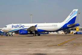 URGENT REQUIREMENT IN INDIGO AIRLINES COMPANY FOR FRESH/EXPERIENCE ALL