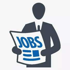 Back Office Jobs For Fresher