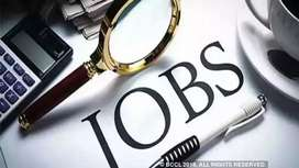 Required for online shoes e-commerce Accountant